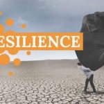 Resilience Is An Inside Job by Cindy Stradling CSL, CPC